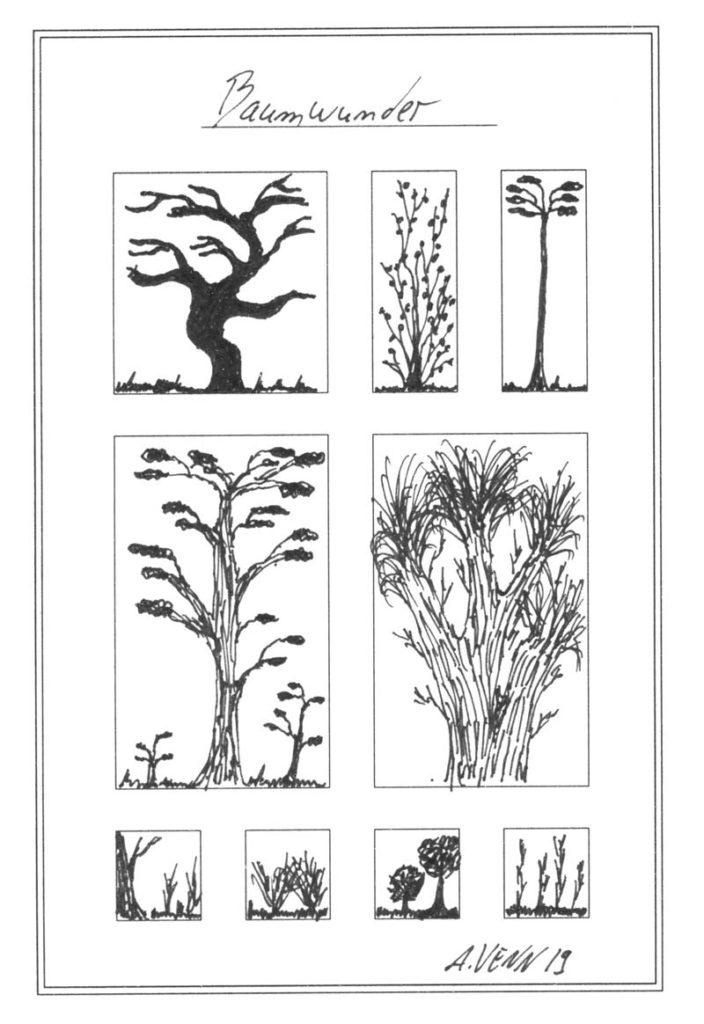 Bäume gezeichnet in schwarz-weiss
