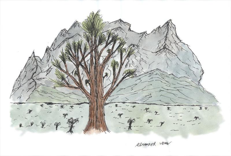 Berge im Hintergrund gezeichnet und mit Aquarell koloriert