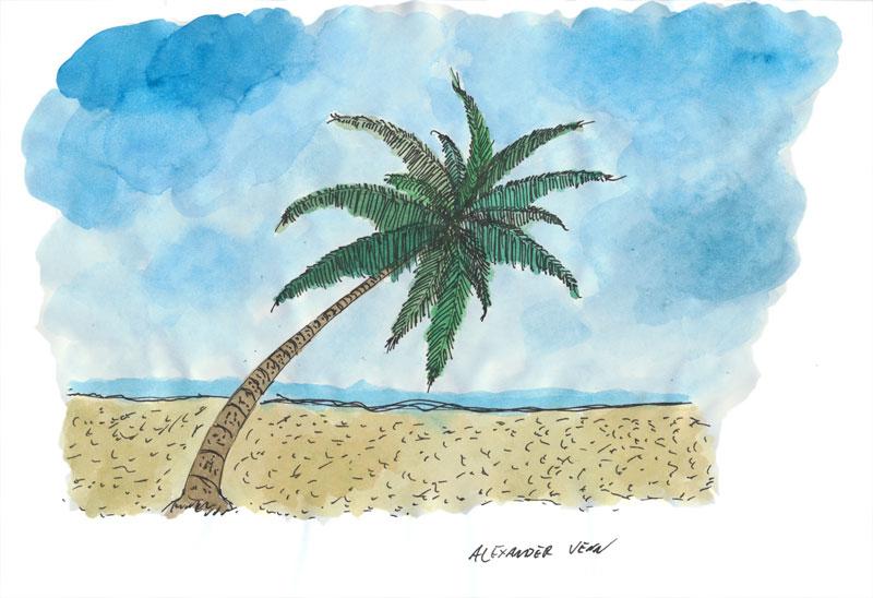 Palme am Strand mit blauem Himmel - Aquarellkoloratur